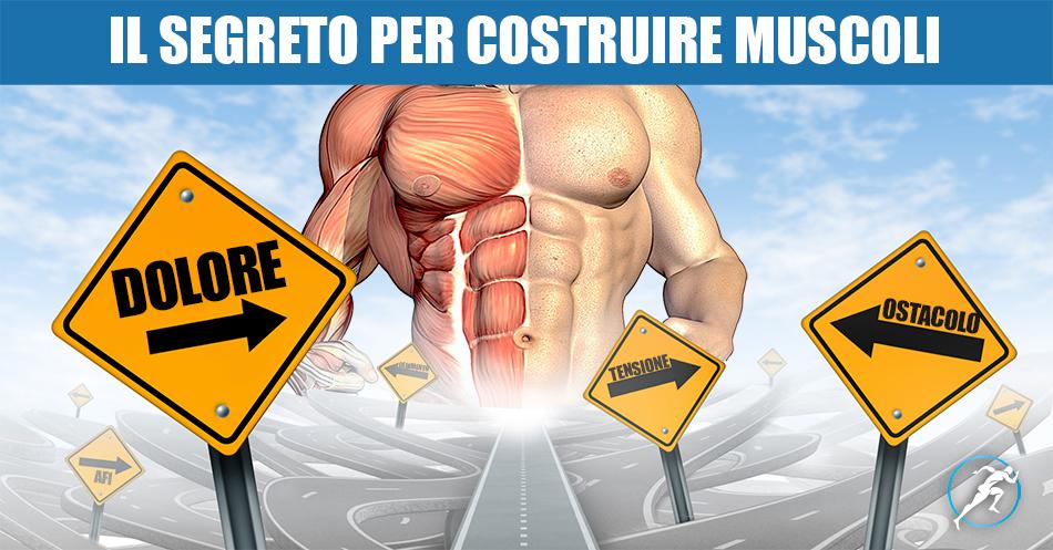 modi per costruire muscoli e perdere peso